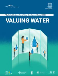 Valuing water